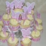 cupcaketray2