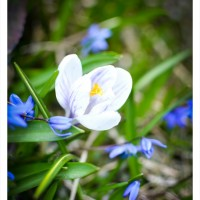 life.april-